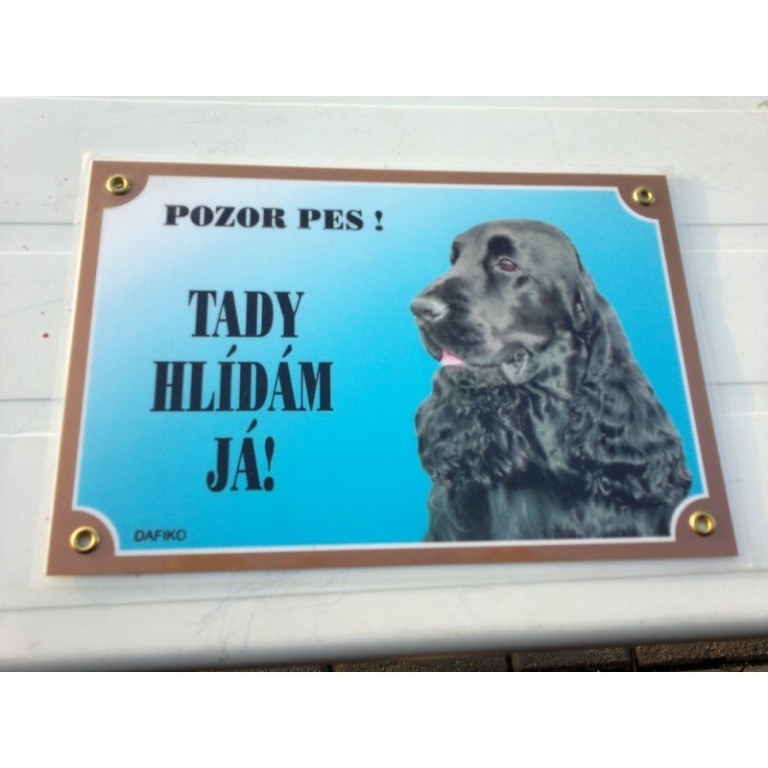 Lisované výstražné cedulky Pozor pes
