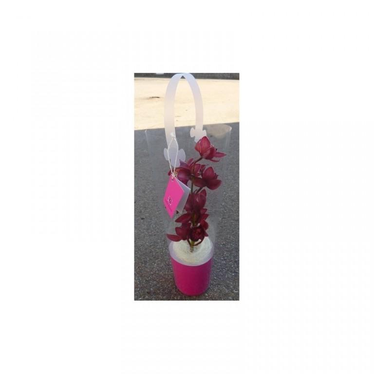 Tuba Orchidej